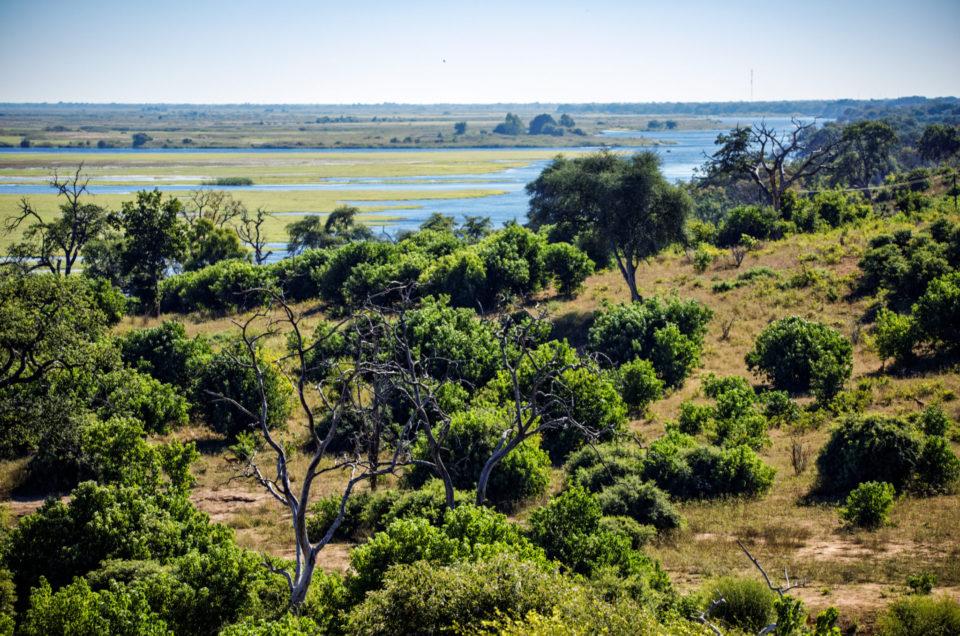 Le Parc National de Chobe au Botswana